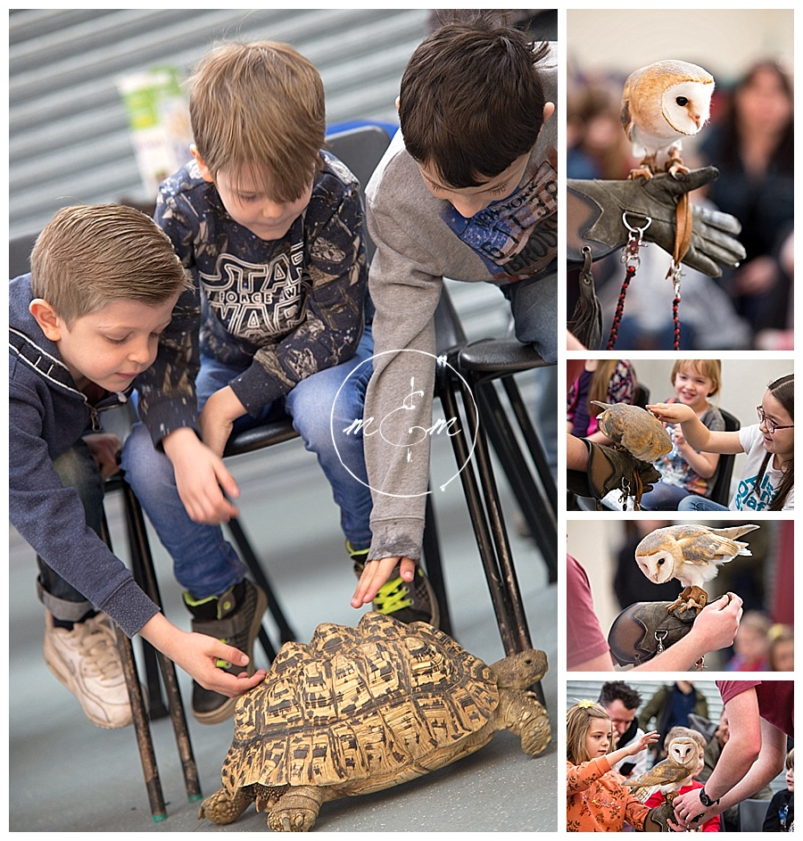 Tilgate-Park-Animal-Centre-Childrens-Birthday-Party-Photograpy-Crawley-Horsham-West-Sussex-Millie-And-Max